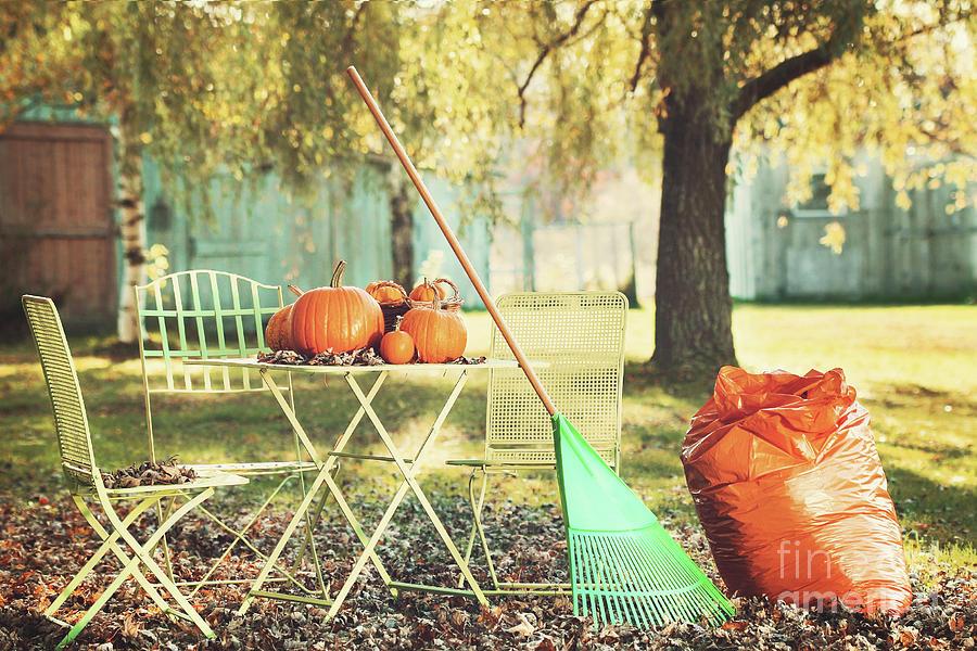 Autumn Photograph - Pumpkins On The Table by Sandra Cunningham