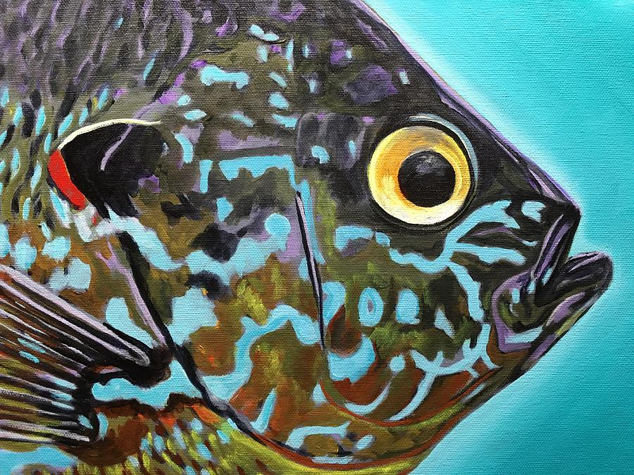 Fly Fishing Painting - Pumpkinseed by Phil Watford