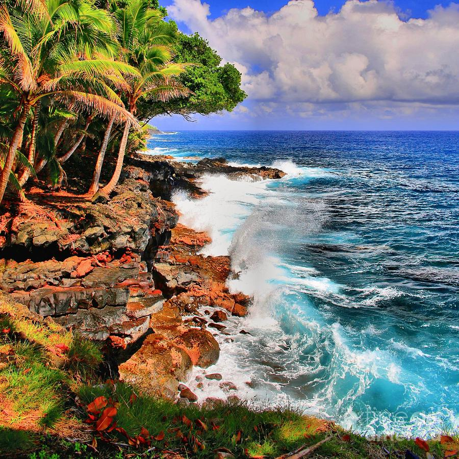 Puna Coast Hawaii Photograph