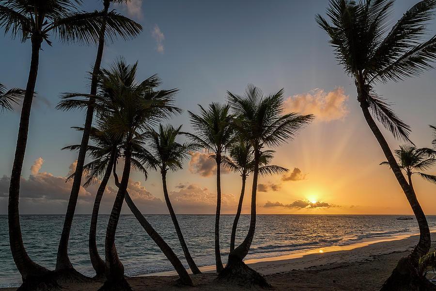 Punta Cana Sunrise by Adam Romanowicz