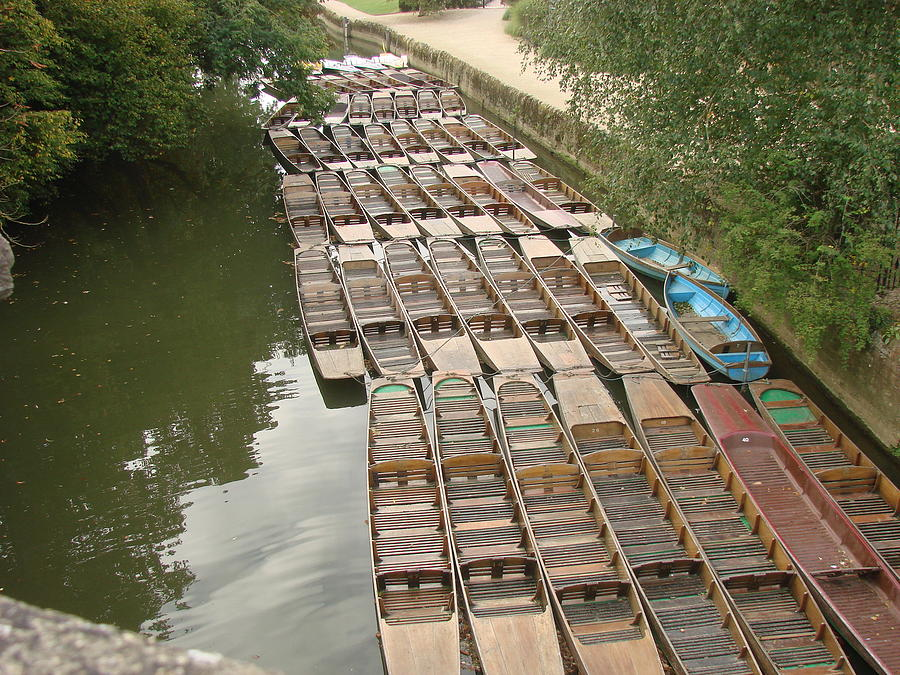 Punts Photograph - Punts For Hire by Wayne Whitney