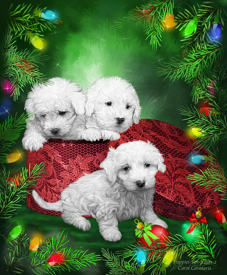 Puppies For Christmas by Carol Cavalaris