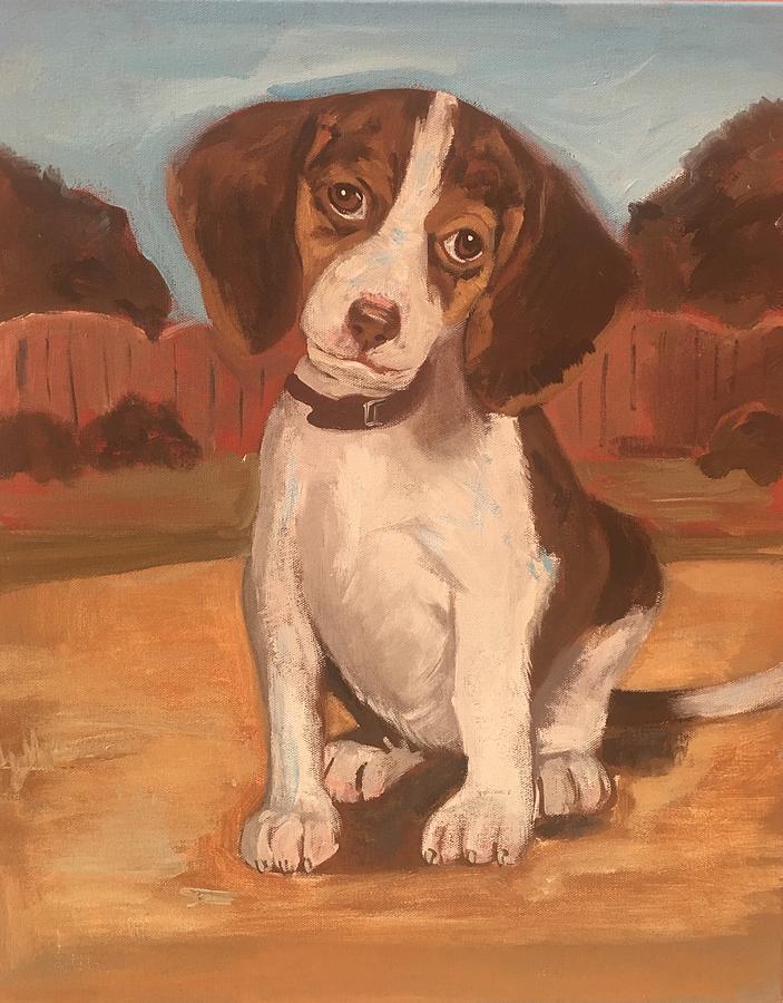 Puppy 1 by Alejandro Lopez-Tasso