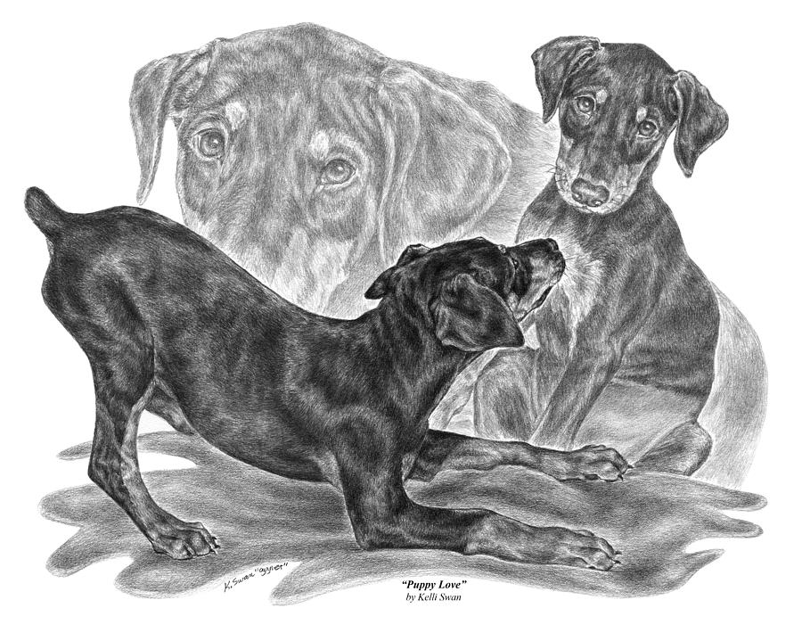 Black And Tan Doberman Drawing - Puppy Love - Doberman Pinscher Pup by Kelli Swan