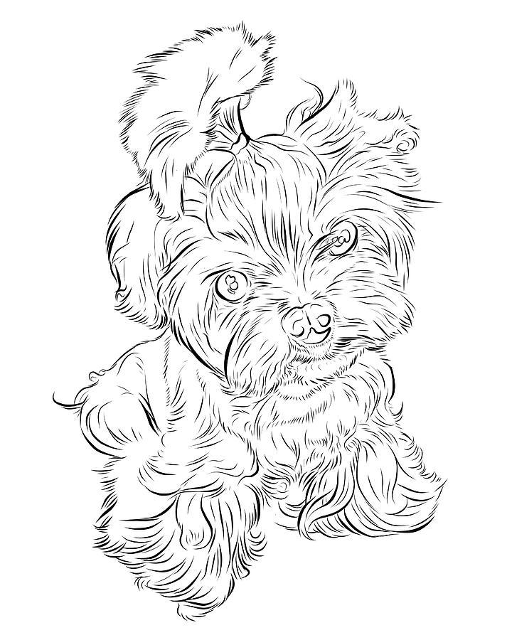 Puppy Digital Art - Puppy_printfilecopy by Stephen Carcello