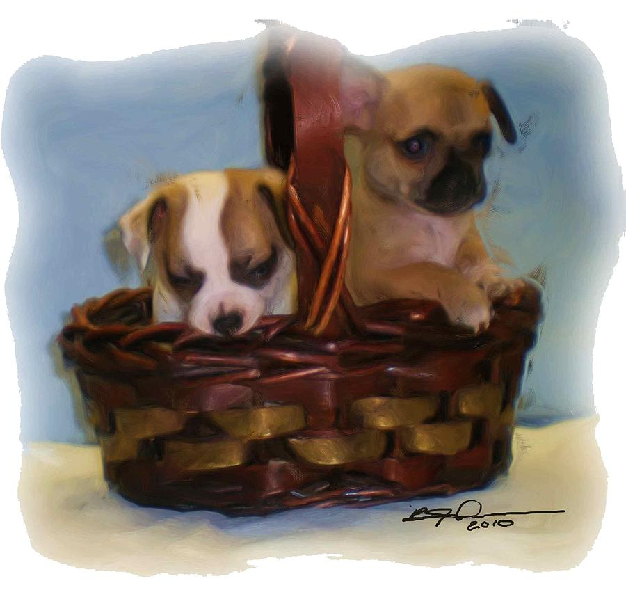 Animals Photograph - Pups In A Basket by Beverly Johnson