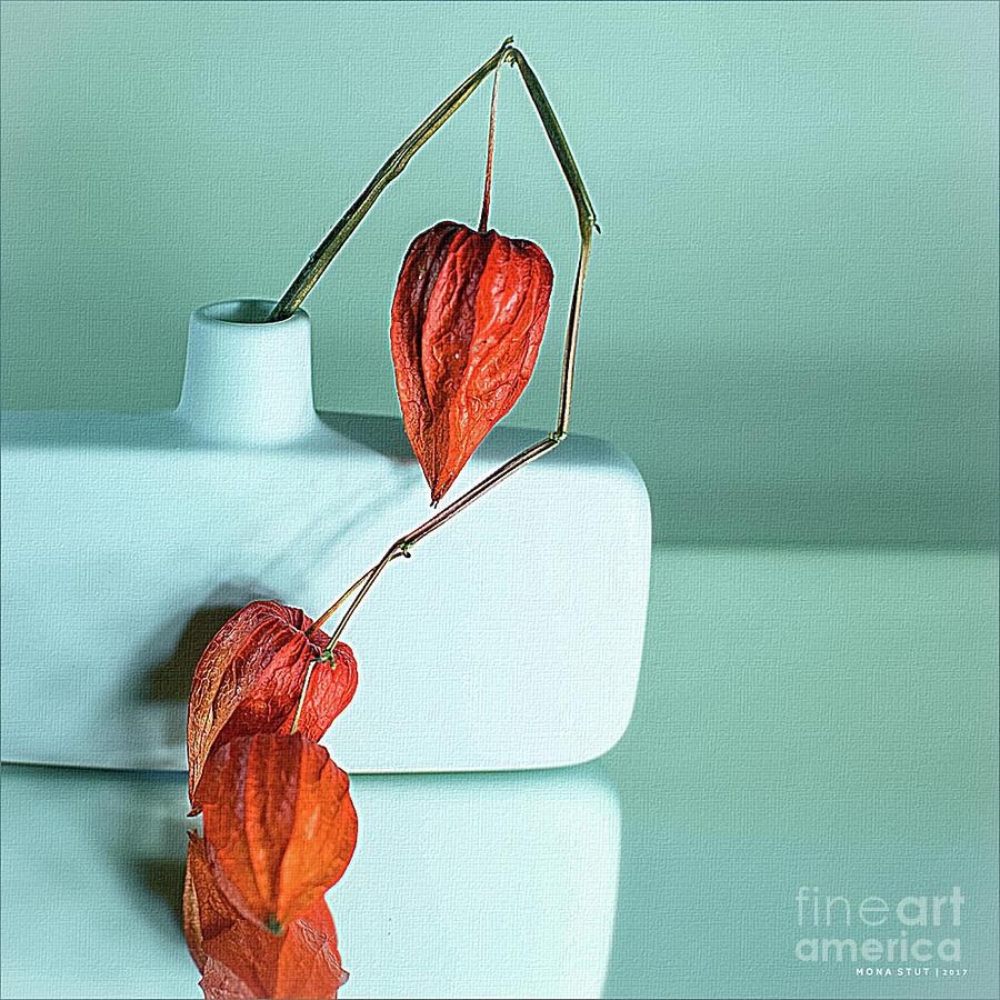 Nature Photograph - Pure Orange Macro by Mona Stut