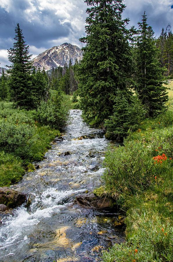 Creek Photograph - Pure Rocky Mtn. Spring Water by Link Jackson