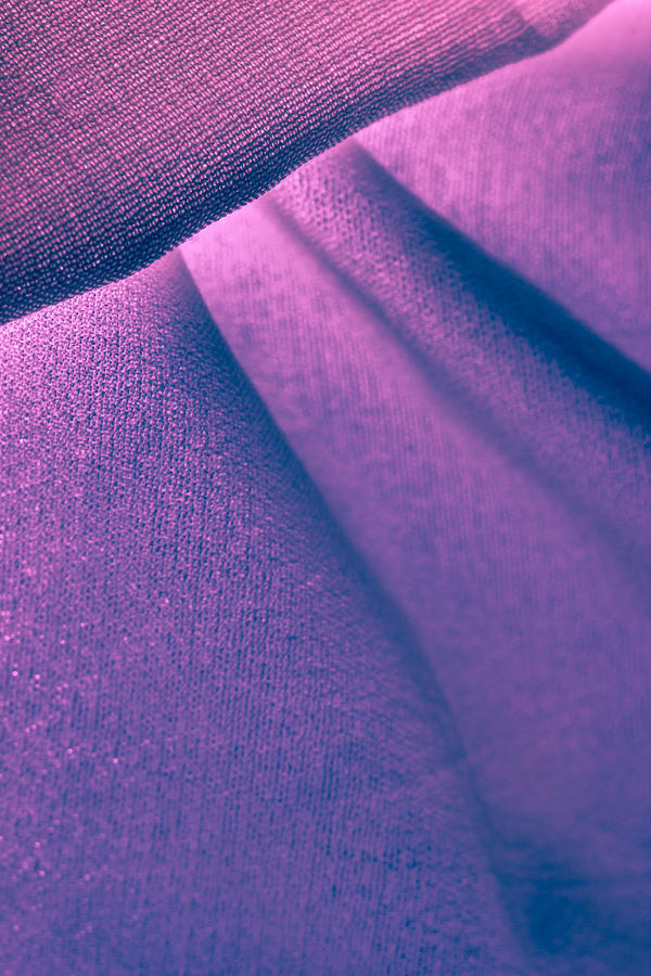 Abstract Photograph - Purple And Bold by Yogendra Joshi