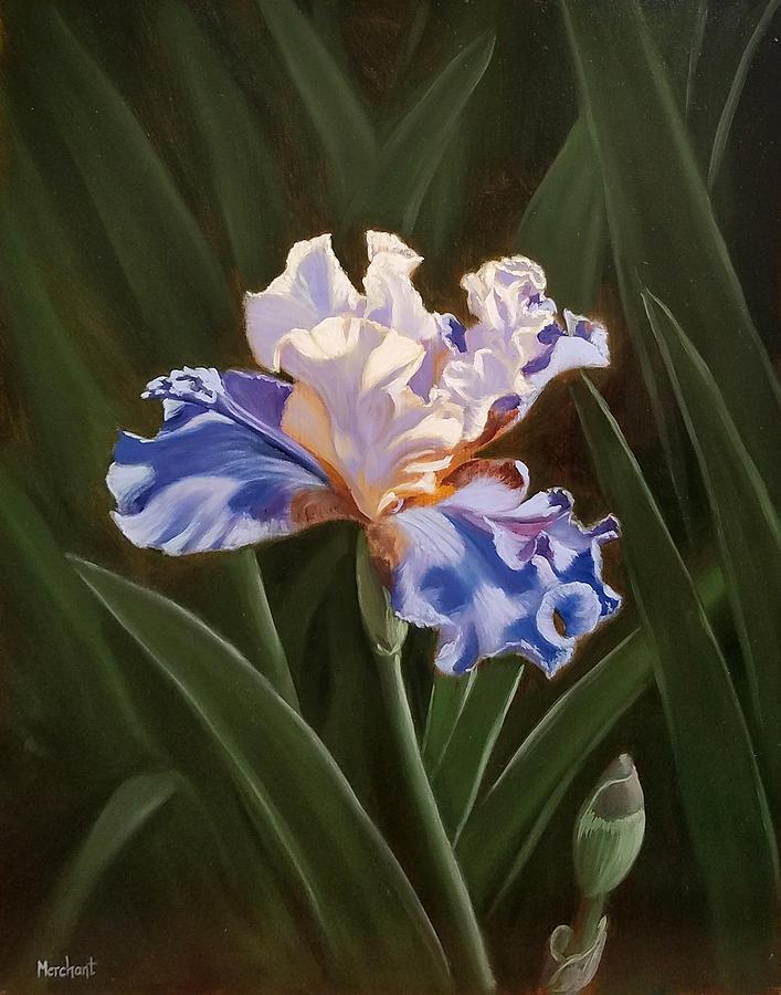 Oil Painting - Purple And White Iris by Linda Merchant