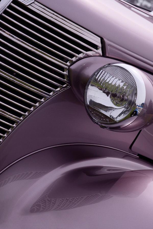 Purple Photograph - Purple Baby by Rebecca Cozart