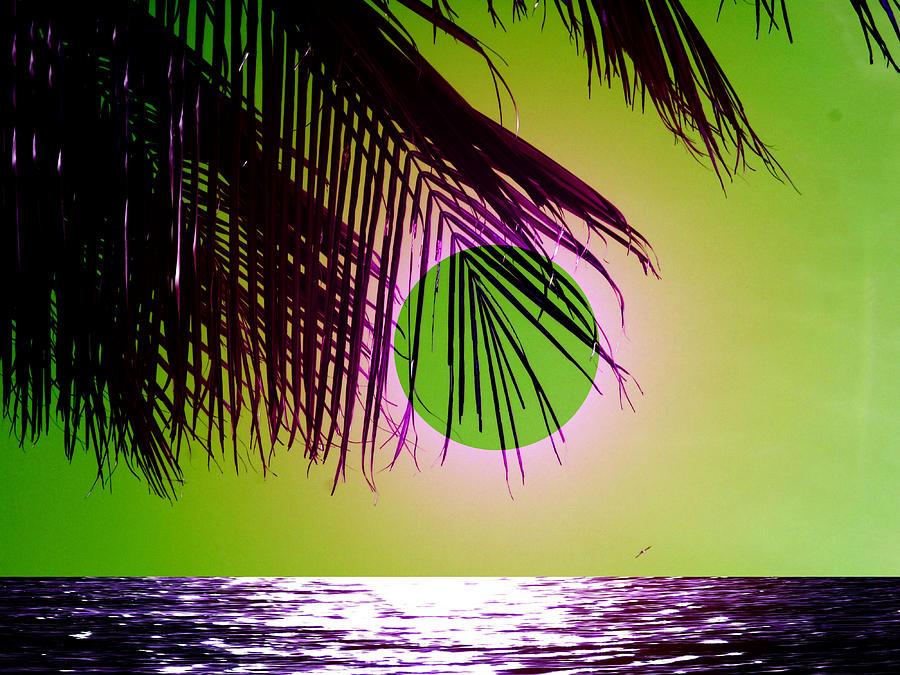 Beach Digital Art - Purple Beach by Juana Maria Garcia-Domenech