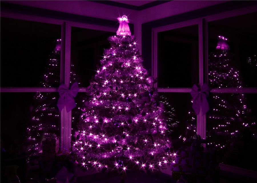 Christmas Tree Photograph - Purple Christmas by Lori Deiter