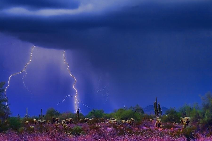 Desert Photograph - Purple Desert Storm by James BO  Insogna