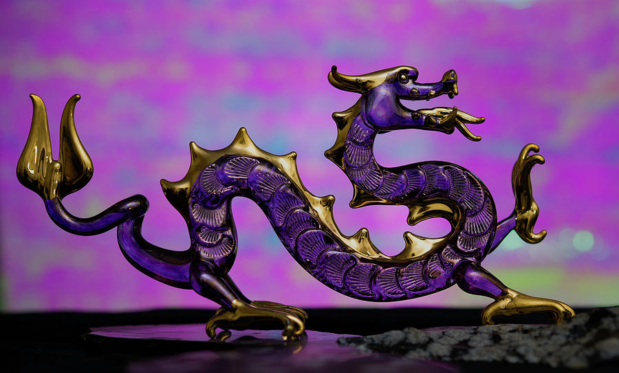 Purple Dragon by John Forde