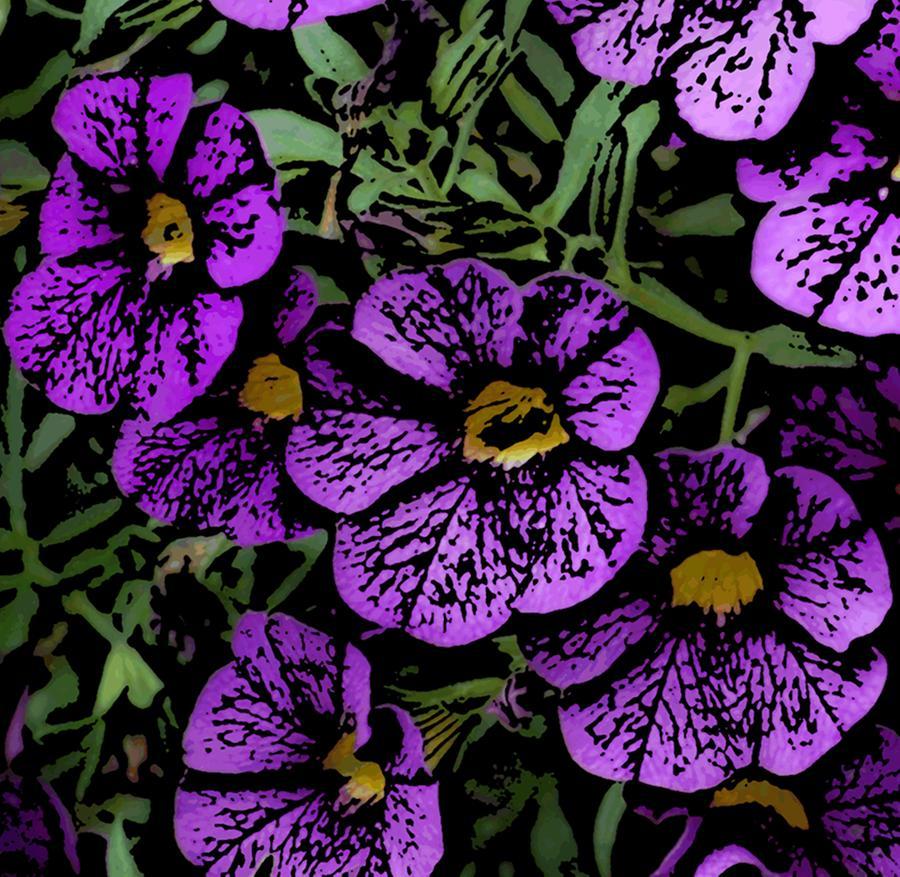 Nature Photograph - Purple Floral Fantasy by David Lane