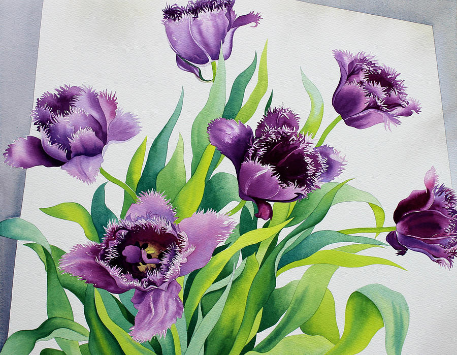 Purple Fringe Tulips Painting By Christopher Ryland