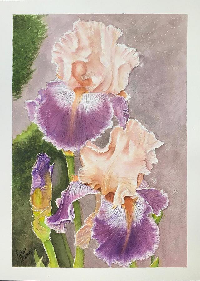 Purple Gold Iris by Richard Benson