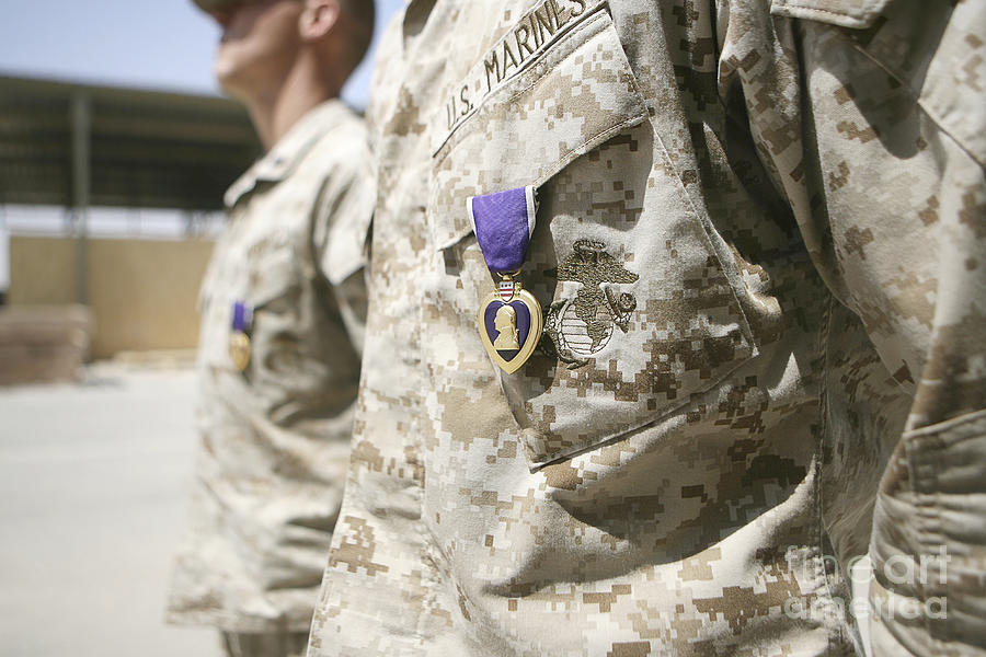 Adults Only Photograph - Purple Heart Recipients by Stocktrek Images
