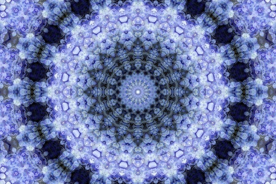 Purple Digital Art - Purple Hydrangea Mandala by Janusian Gallery