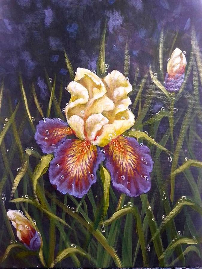 Iris Painting - Purple Iris by Kimberly Blaylock