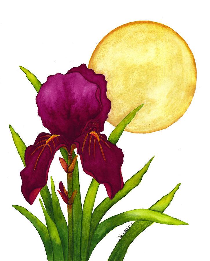 Iris Painting - Purple Iris by Stephanie  Jolley
