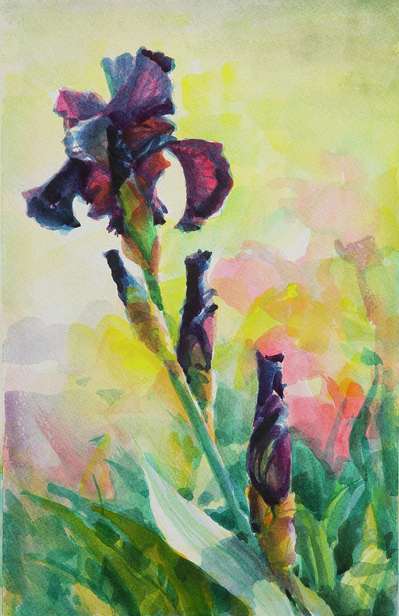 Flower Painting - Purple Iris by Steve Henderson