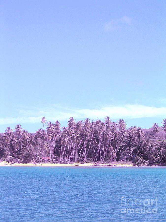 Barbados Photograph - Purple Island by Barbara Marcus