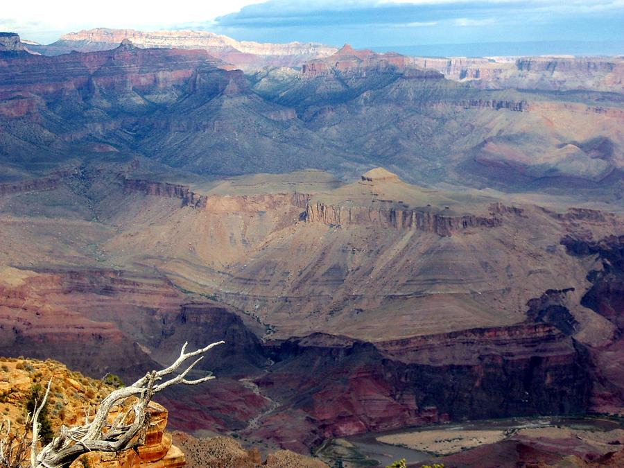 Grand Canyon National Park Photograph - Purple Layers by Carrie Putz