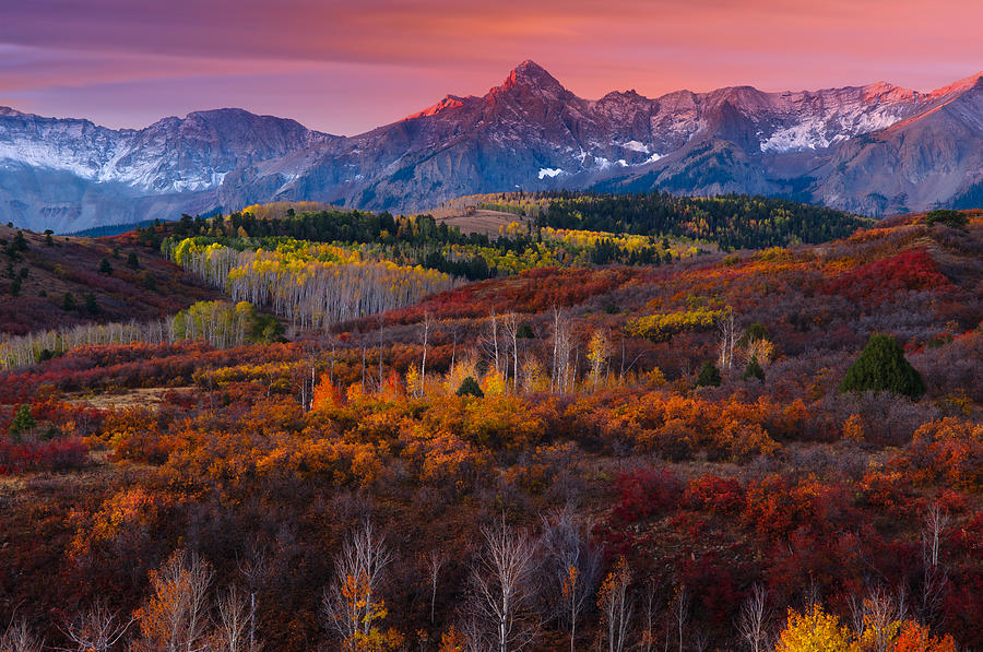 Delightful Mountain Majesty #4: Dallas Divide Photograph - Purple Mountains Majesty By Tim Reaves