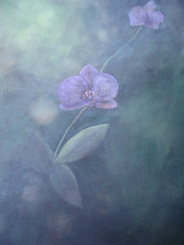 Purple Orchid Painting - Purple Orchid by Rebecca  Both