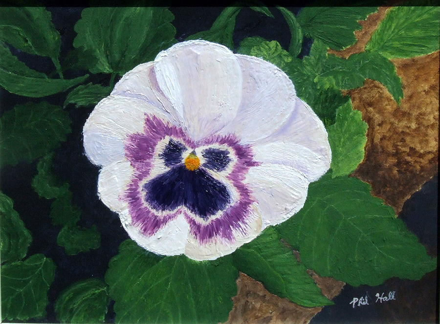 Pansy Painting - Purple Pansy by Philip Hall