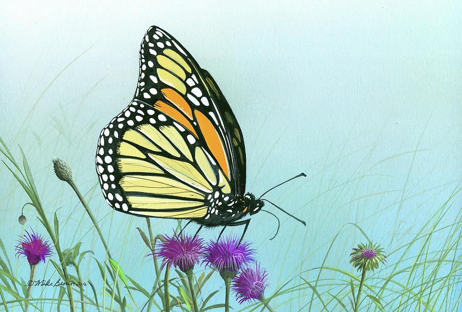 Monarch Butterfly Painting - Purple Passion by Mike Brown
