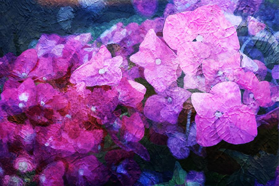 Painterly Photograph - Purple Pink Painterliness by Zahra Majid