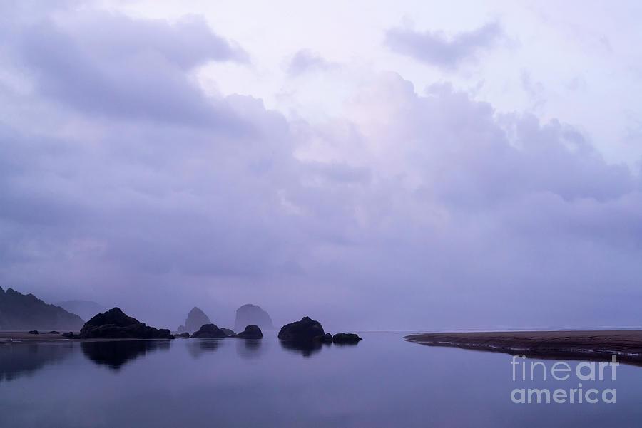 Purple Rain Photograph