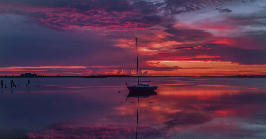 Dunedin Marina Photograph - Purple Rain by Todd Rogers