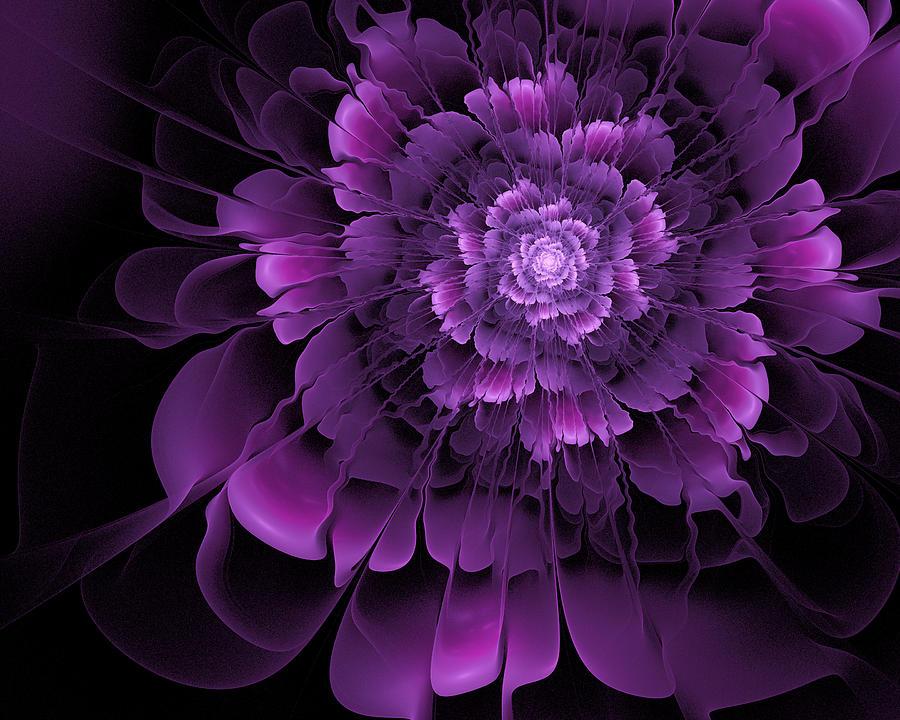 Purple Rose Of Cairo Digital Art