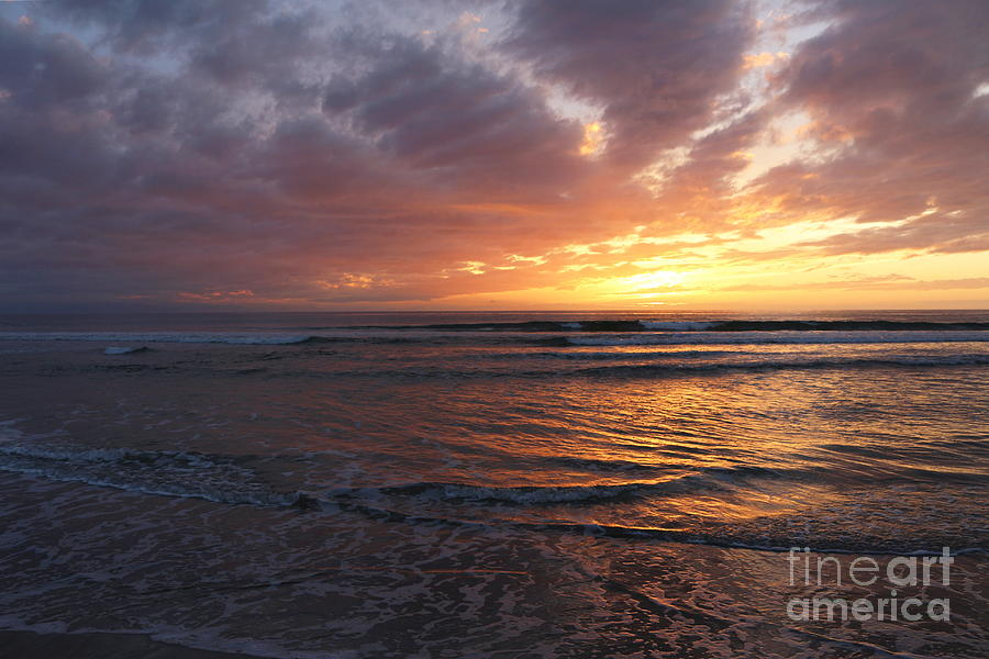 Seascape Photograph - Purple Skies by Maria Pogoda