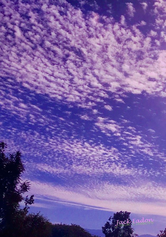 Purple Photograph - Purple Sky At Casapaz by Jack Eadon