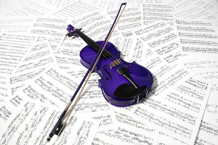 Purple Violin And Music Photograph