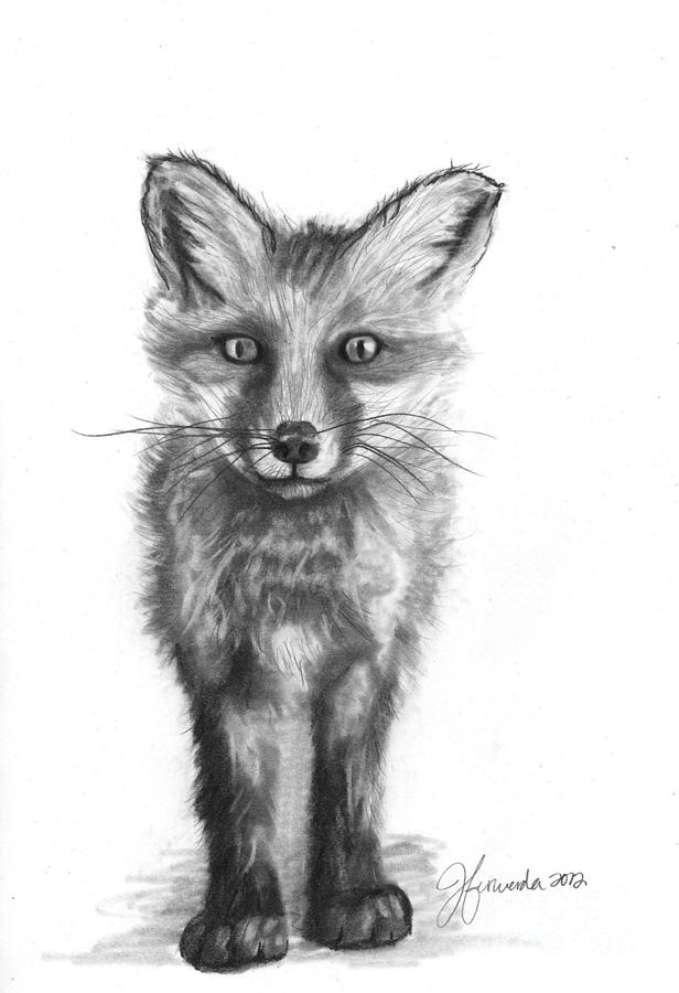Red Fox Drawing - Purpose In My Steps by J Ferwerda