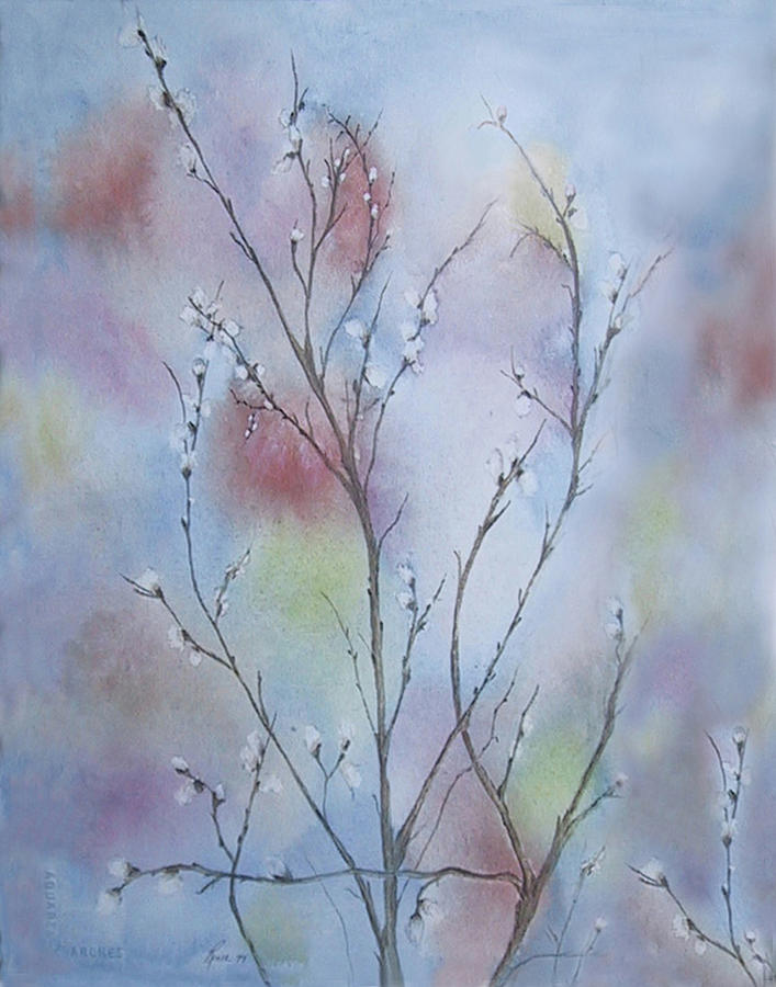 Pussy Willow Painting - Pussywillows by Renee Catherine Wittmann