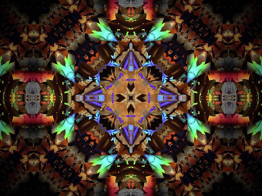 Quadrants 61016 Digital Art