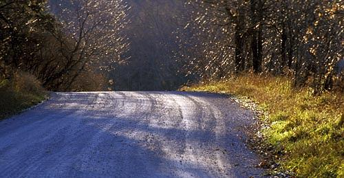 Roads Photograph - Quebec Road by Catherine Kelly
