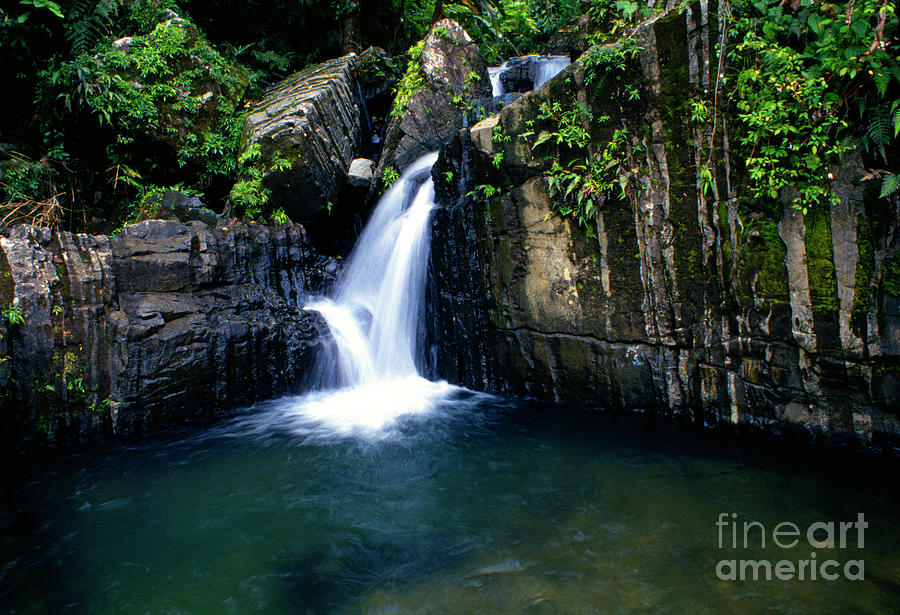 Puerto Rico Photograph - Quebrada Juan Diego by Thomas R Fletcher