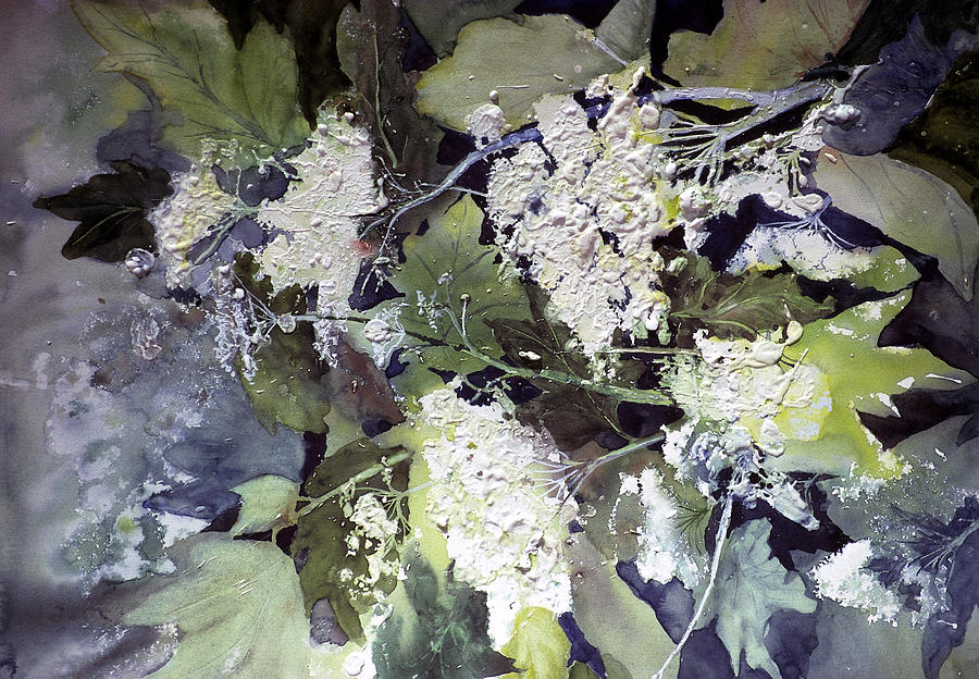 Queen Annes Lace Painting - Queen Annes Lace by Connie Williams