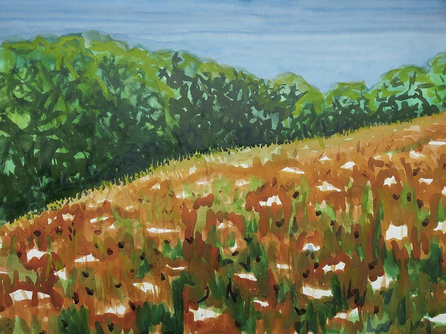 Plein Air Painting - Queen Annes Lace Field by Bethany Lee