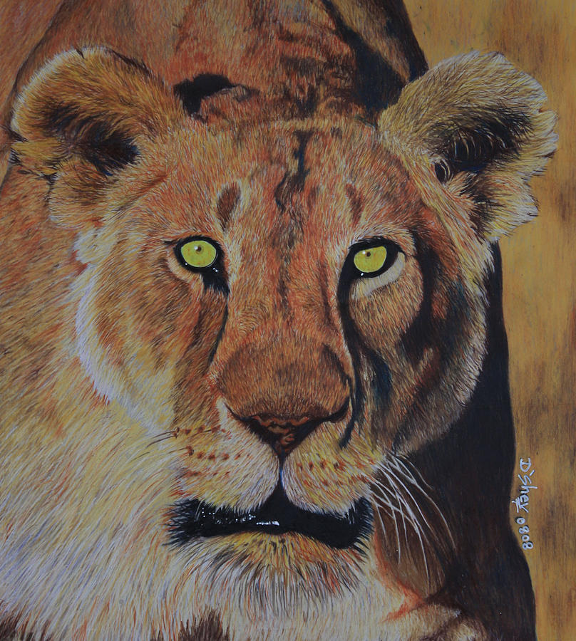 Lion Painting - Queen Of The Jungle by Don MacCarthy