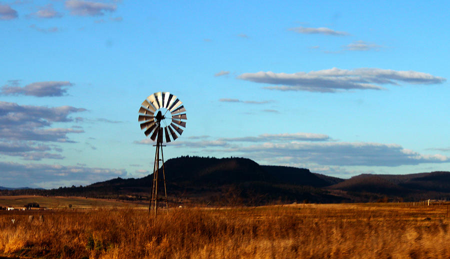 Queensland Photograph - Queensland Windmill by Susan Vineyard