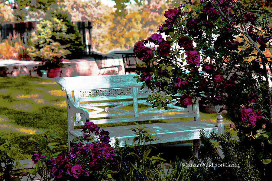 Garden Photograph - Quiet And At Peace by Suzan Madison Casey